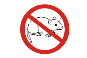 大连灭老鼠
